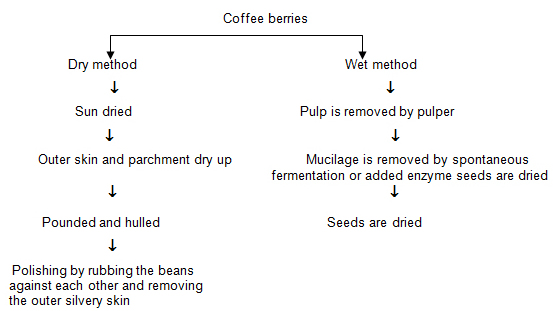 theoretical framework of coffee The nau son uses the tenets of benner (1984, 2000, 2001) and leininger (1991, 2000, 2006) to form the eclectic conceptual framework specifically.