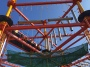 Adrenaline Rush : WildTribe Ranch Adventure Park Opens in ECR,Chennai