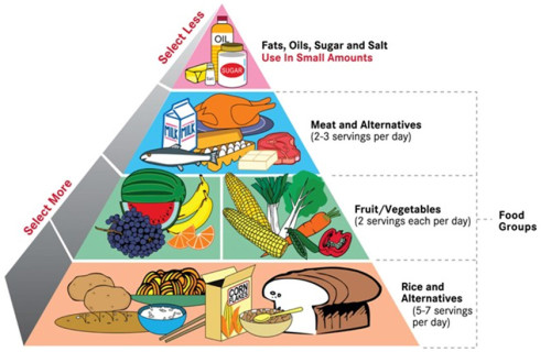 preparing-a-healthy-food-pyramid-chart-food-pyramid-chart.jpg